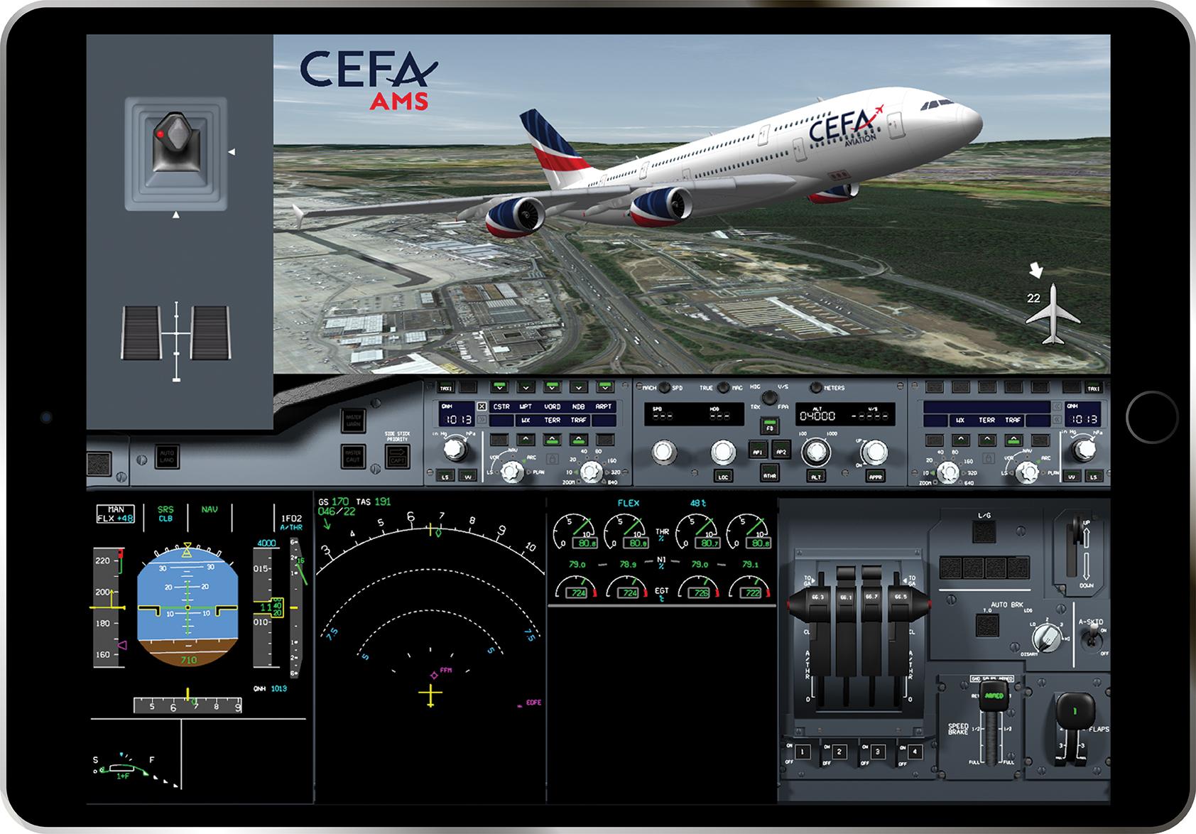 CEFA flight animation system