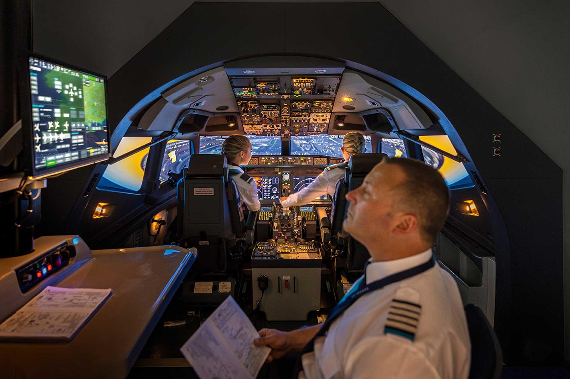 Resilient Pilot Skyborne sim
